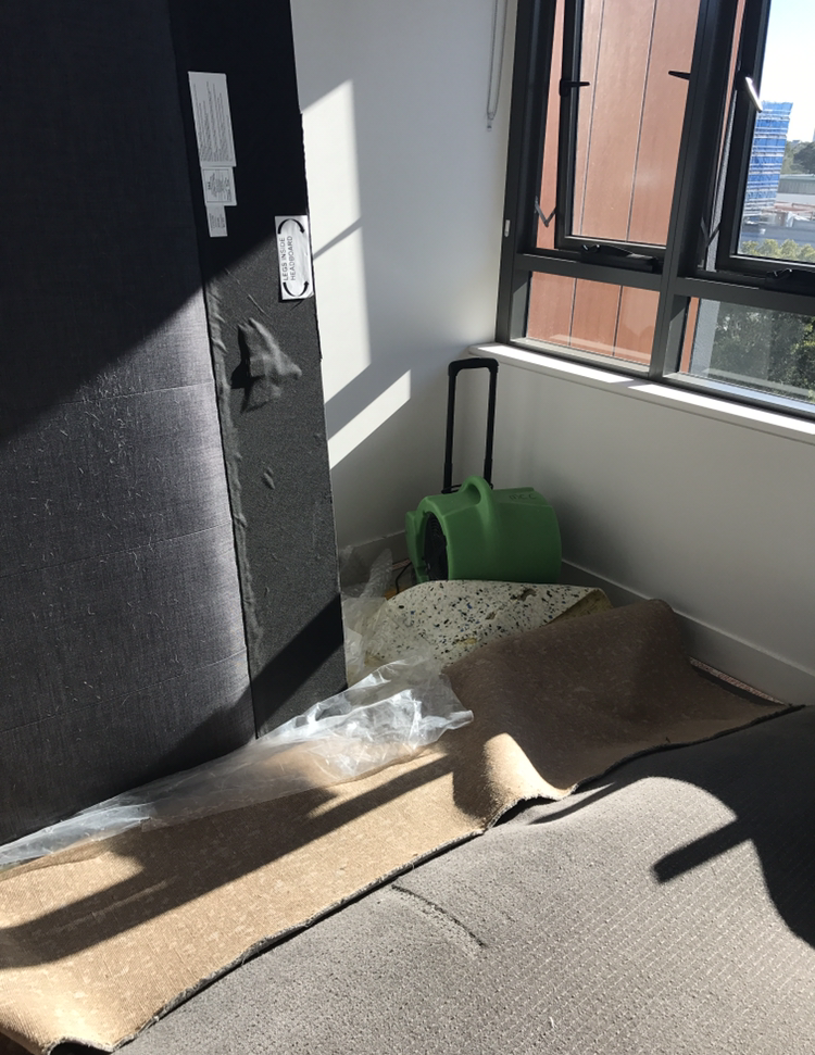 Carpet water damage 2018 Penrith