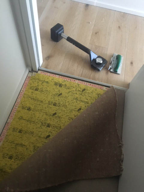 carpet relaying Bondi water damage 2017