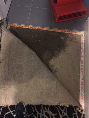 relaying new underlay after carpet water damage