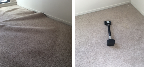 prevent and treat mould in Carpets, Sydney area