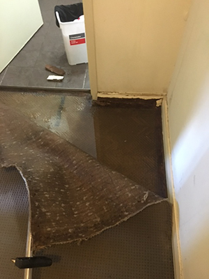 severe carpet water damage June storm 2017